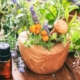 herbs that help you